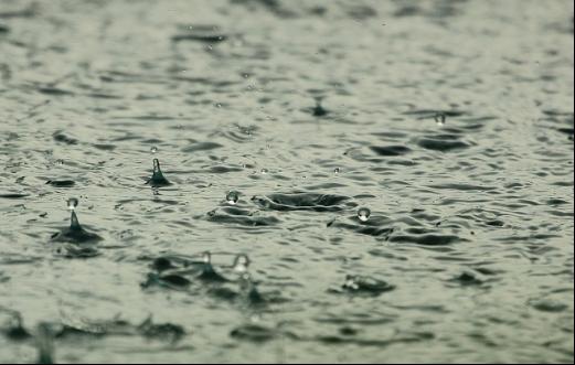 降雨後の流れ込みを狙い打て!シーバスキャッチの最大のチャンス!