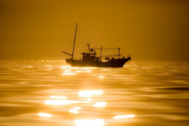 お正月の渡船やジギングは雰囲気が違う!正月こそ釣りに行こう!