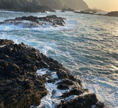磯渡しするタイミングは波をよく見て渡ろう!自分の命は自分で守ろう